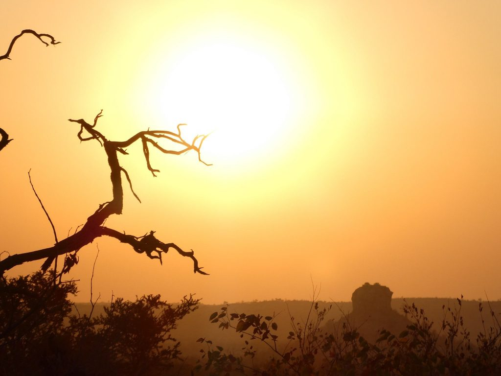 Rondreis ZaZoe Xperience - Mapungubwe National Park