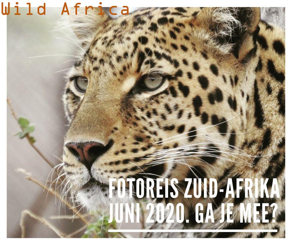 Special - Fotoreis Zuid-Afrika 2020