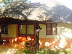 Lodge ZaZoe Xperience - chalet Sekelbos buitenkant