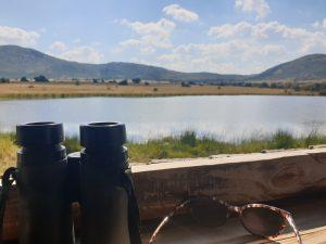 Landschap - ZaZoe Xperience - wildobservatie vanuit schuilhut